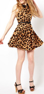 Is it alright to wear a leopard print skater dress & shoes to a wedding?
