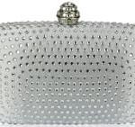 handbag_silver_clutch
